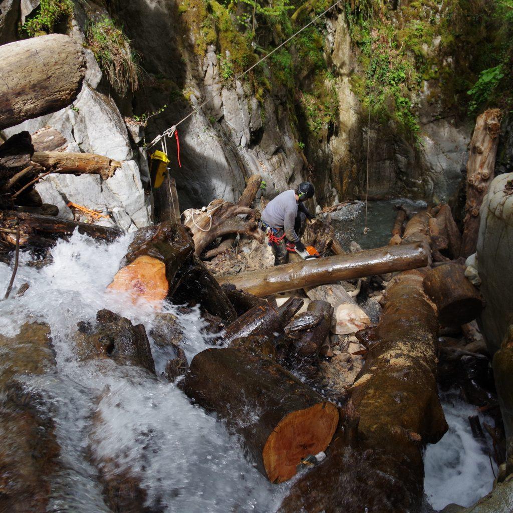 tronçonnage d'un embacle faisant un barrage instable dans la rivière du Bitet Laruns , vallée d'Ossau , pyrenées atlantiques