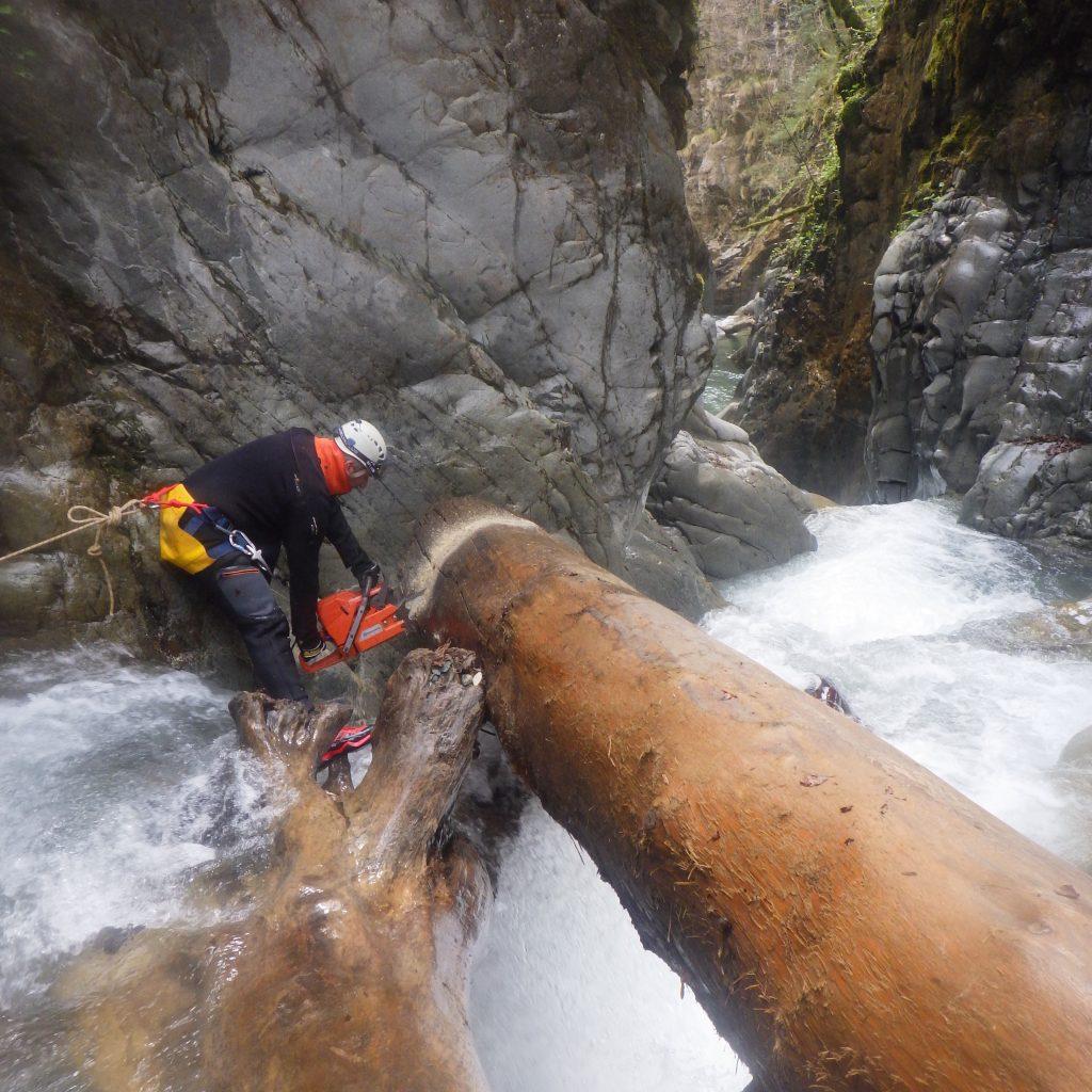 démontage par tronçonnage d'un arbre faisant barrage dans une rivière